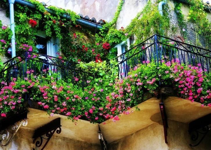 картинка ландшафный дизайн балкона