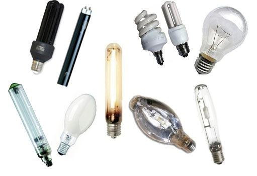 картинка лампы для светильников