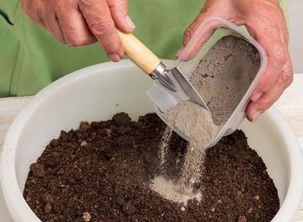 картинка почва для зелени
