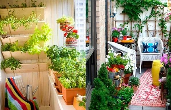 картинка зимний сад на балконе