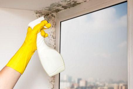 картинка мытье пластиковых окон