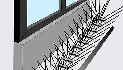 картинка шиповые ленты