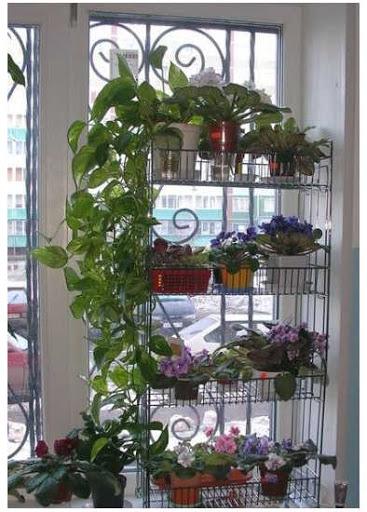 картинка этажерка для цветов